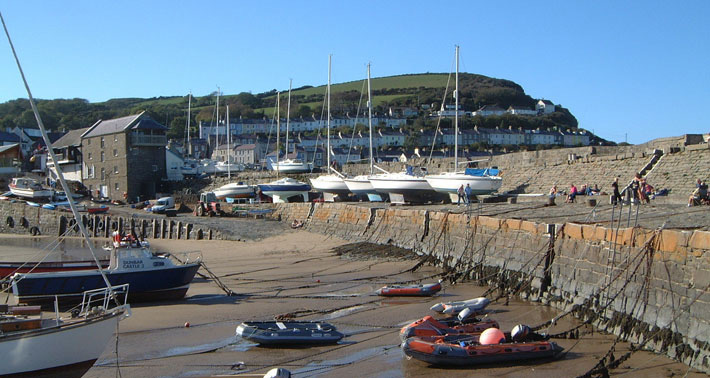 From-New-Quay-harbour-you-can-take-boat-trips-to-spot-dolphins.jpg
